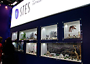 Витрины выставки  Junwex 2013: Витрины-окна. Ювелирные украшения STES. Windows-showcases. Jewelry sh
