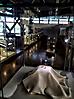 Музей ИЗО светильники для картин W-Series и светильники на стойках WK для Фаберже